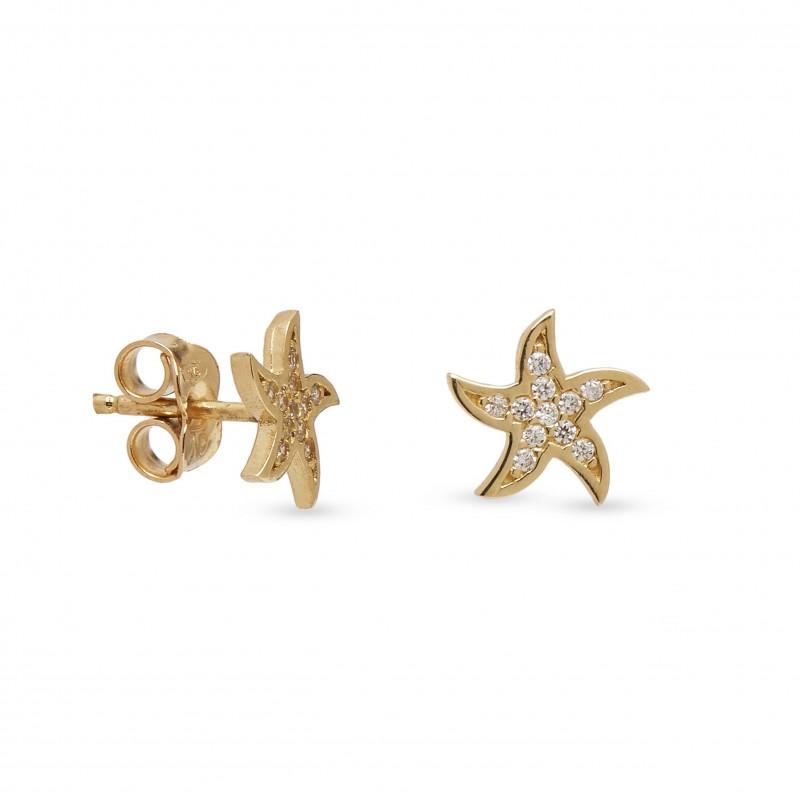 Brincos estrelas do mar